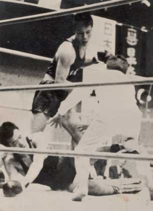 boxer02